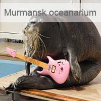 Russian North, Murmansk oceanarium
